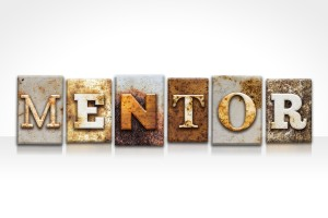 What do you look for in a mentor?